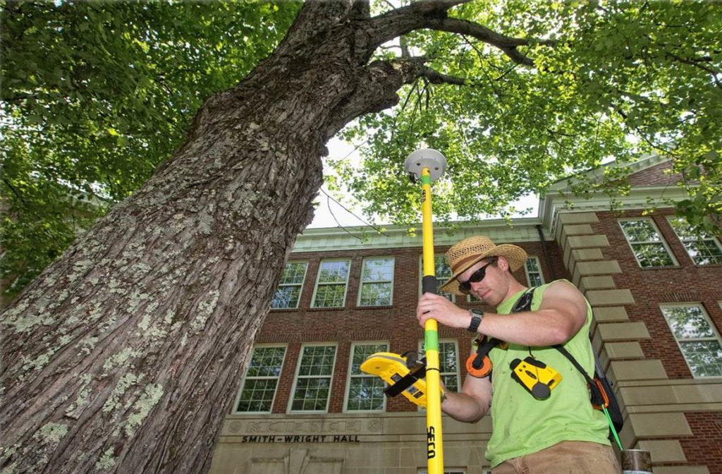 Arborist Consultations-Miami Beach FL Tree Trimming and Stump Grinding Services-We Offer Tree Trimming Services, Tree Removal, Tree Pruning, Tree Cutting, Residential and Commercial Tree Trimming Services, Storm Damage, Emergency Tree Removal, Land Clearing, Tree Companies, Tree Care Service, Stump Grinding, and we're the Best Tree Trimming Company Near You Guaranteed!