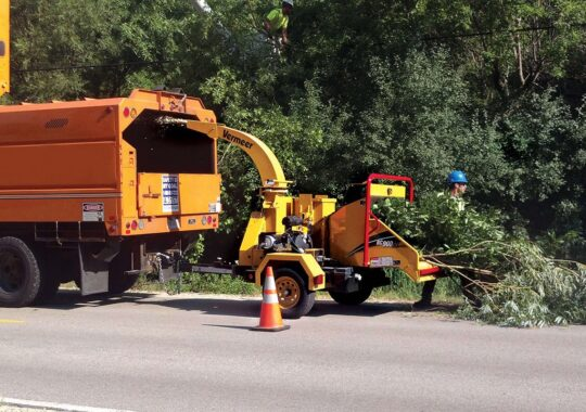 Commercial Tree Services-Miami Beach FL Tree Trimming and Stump Grinding Services-We Offer Tree Trimming Services, Tree Removal, Tree Pruning, Tree Cutting, Residential and Commercial Tree Trimming Services, Storm Damage, Emergency Tree Removal, Land Clearing, Tree Companies, Tree Care Service, Stump Grinding, and we're the Best Tree Trimming Company Near You Guaranteed!