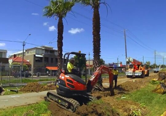 Palm Tree Removal-Miami Beach FL Tree Trimming and Stump Grinding Services-We Offer Tree Trimming Services, Tree Removal, Tree Pruning, Tree Cutting, Residential and Commercial Tree Trimming Services, Storm Damage, Emergency Tree Removal, Land Clearing, Tree Companies, Tree Care Service, Stump Grinding, and we're the Best Tree Trimming Company Near You Guaranteed!