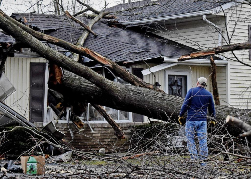 Storm Damage-Miami Beach FL Tree Trimming and Stump Grinding Services-We Offer Tree Trimming Services, Tree Removal, Tree Pruning, Tree Cutting, Residential and Commercial Tree Trimming Services, Storm Damage, Emergency Tree Removal, Land Clearing, Tree Companies, Tree Care Service, Stump Grinding, and we're the Best Tree Trimming Company Near You Guaranteed!